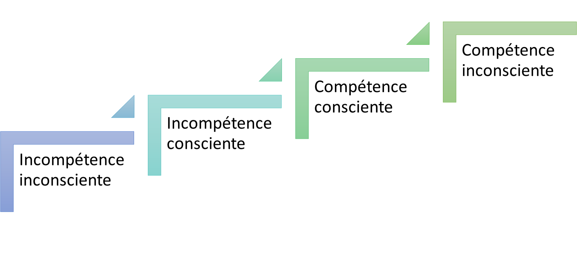 4e principe : Le processus logique de toute croissance