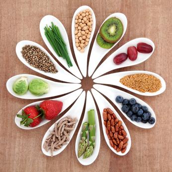 V1 - Naissance de l'Alimentation Vibratoire